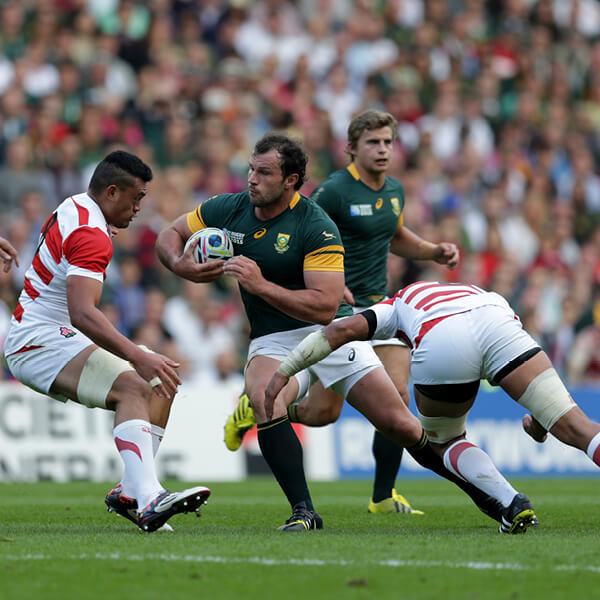 South West Rugby Cups: Rugby World Cup 2019 Fixtures